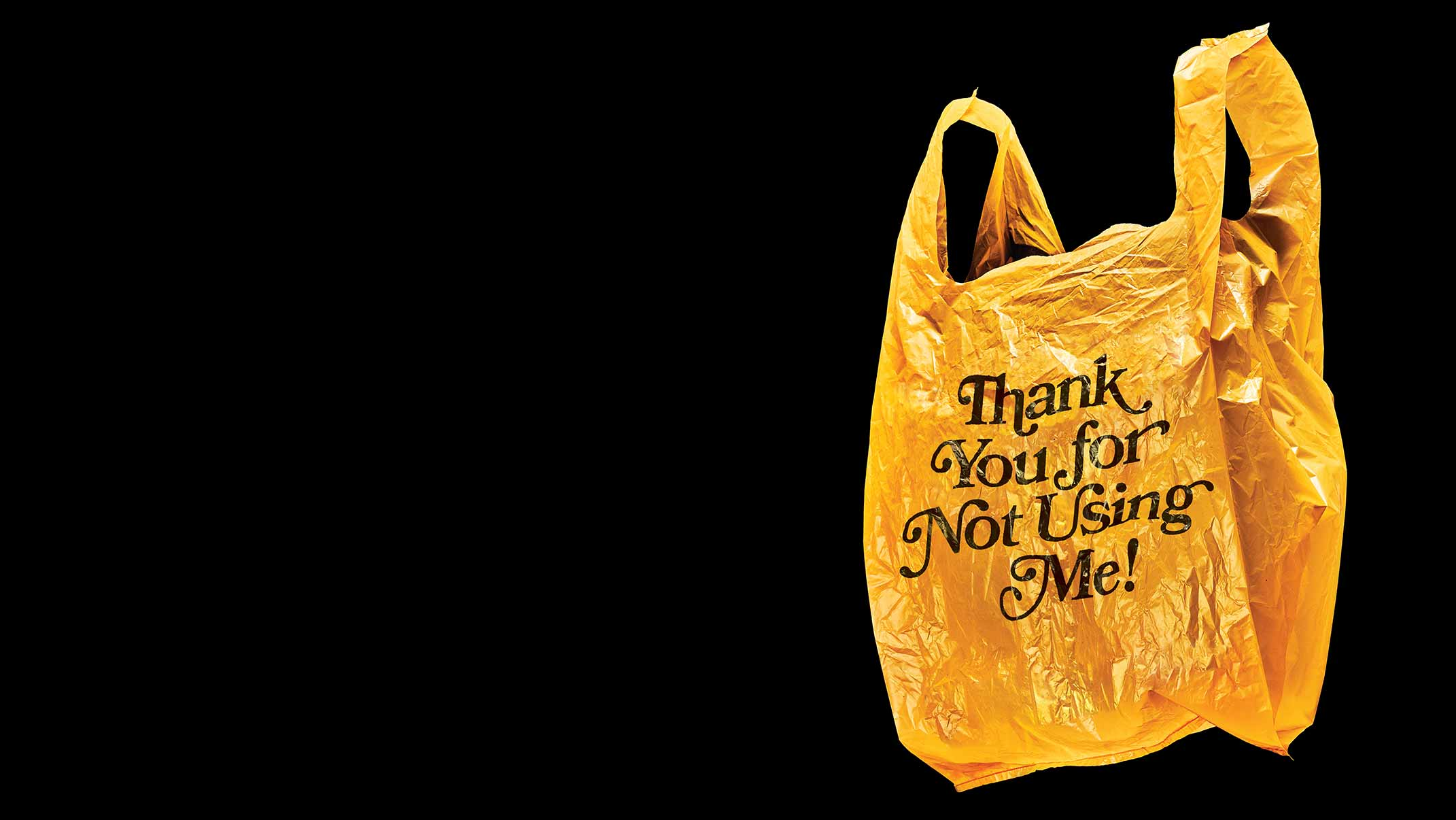 5 Things You Need to Know About How Florida Banned Plastic Bags