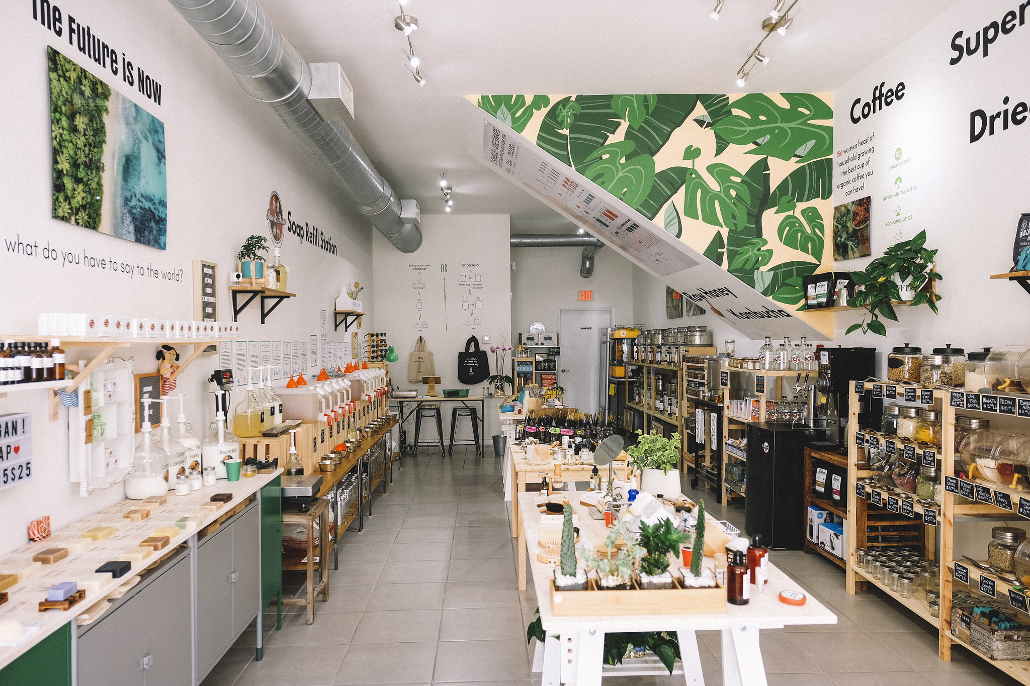 Must-Know Sustainable Small Businesses in Miami
